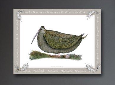 tonyfernandeswoodcock